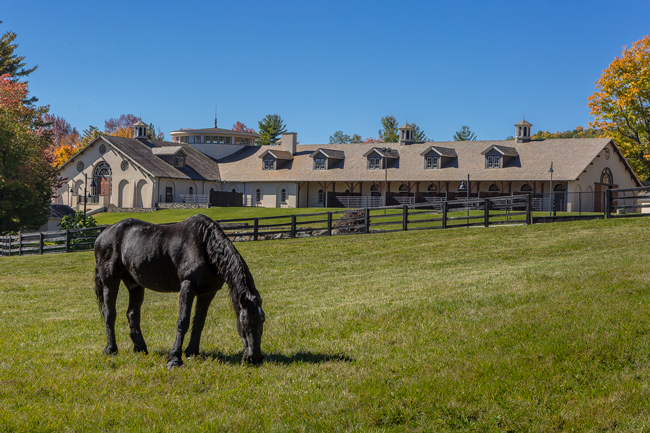 Tour Beautiful Pinnacle Farm Stable Style