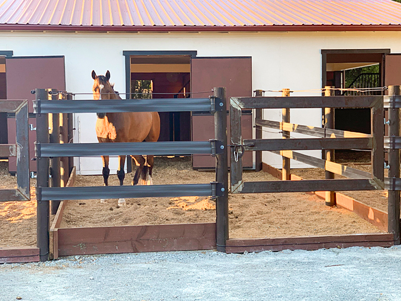 Horses with in and out stalls