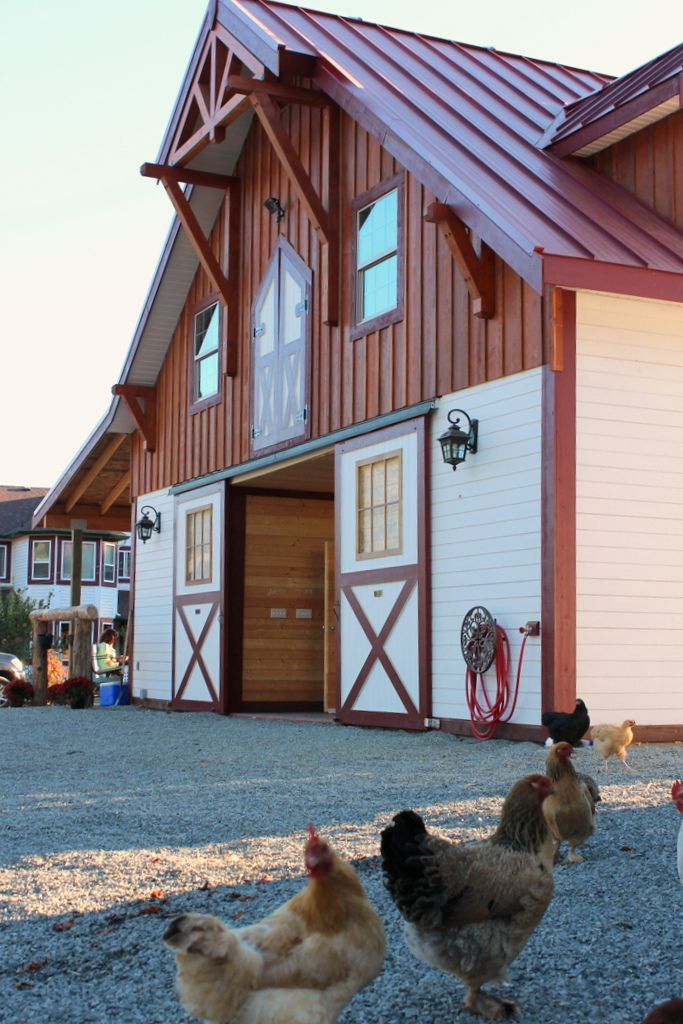Tour A Rustic Two Tone Barn In Canada Stable Style