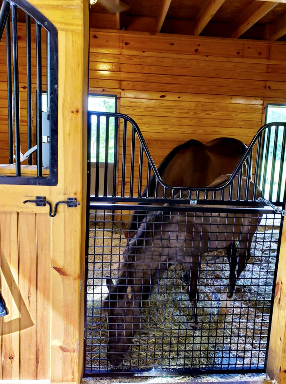 Free Shipping On Stall Gates From American Stalls Stable